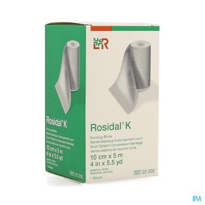 Rosidal K Elastische Windel 10cmx5m 22202