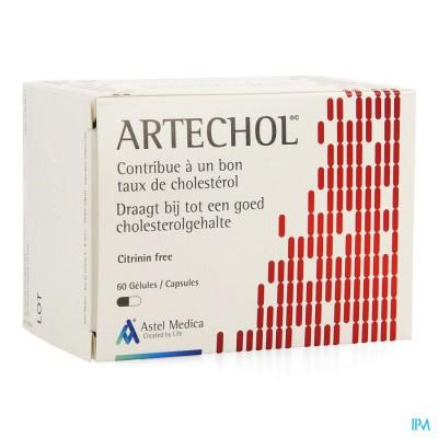 Artechol Gel 60